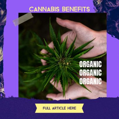 Banner Maker to Explain the Benefits of Cannabis 2377e
